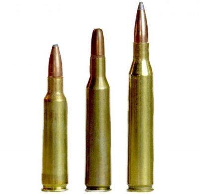 Rifle Calibers – Bone Internationl